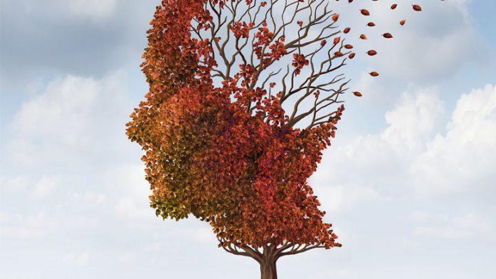L'Alzheimer malattia di priorità mondiale