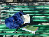 Competenze studenti e abbandono scolastico: dati critici al Sud